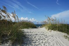 Folly Beach, SC  Near Charleston, SC