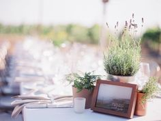 Simply Elegant Sonoma Affair | Napa + Sonoma, CA