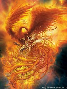 Phoenix by Li Kun Phoenix Artwork, Phoenix Images, Phoenix Wallpaper, Mythological Creatures, Mythical Creatures, Fantasy Kunst, Fantasy Art, Phoenix Dragon, Phoenix Bird Tattoos