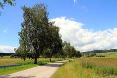 Teils sonnig, teils wolkig dazu milde Temperaturen. Gestern gleich wieder für eine Wanderung genutzt. Mit der S-Bahn ging es nach Posse...