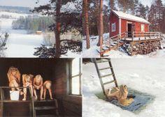 Virven Sauna Talvella, Finland