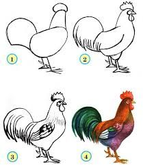 Image result for рисование домашних птиц для детей