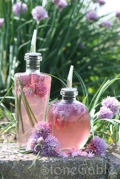 Chive Blossom Vinegar Tutorial: