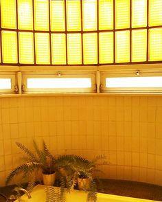 This is the #reallight in the torresblancas #bathroom. Invelieveble isn'it? Esta es la#luznatural en el #baño de #torresblancas en #madrid. #helechos #findesemana haciendo #terrazas.#style#interiors#events#beautifulhouses##decoration #floristeriasmadrid#condeduquegente#flordelola #instapic#instagood#picoftheday#i4i  #instalovers by flordelola2014