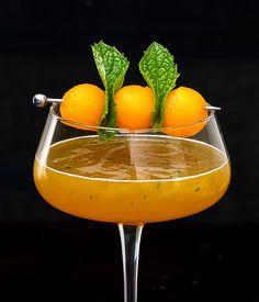 CANTALOUPE MARTINI INGREDIENTS 2 shots cantaloupe juice* 1 shot vodka ½ shot ginger liqueur (I used Domaine de Canton) ¼ shot mint simple syrup a few leaves of fresh mint