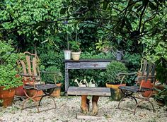 Bucólico, o espaço sombreado por fícus e fotínias tem móveis de madeira e ferro. Nos vasos, buxinhos (Foto: Raphael Briest/Divulgação)