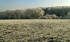 Winter in CR