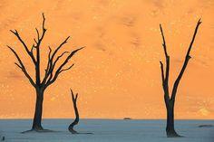 Desierto de Namibia, Namibia