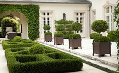 Plenty going on here - several planters, boxwoods, espalier, ivy covered wall, and patterned boxwood. Very nice.