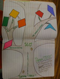 Quadrilateral GeomeTREE Interactive Notebook Page. Greatt middle school math blog!!