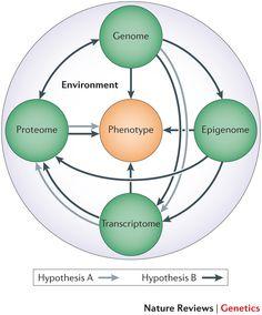 Alternative hypothesis of complex-trait aetiology.