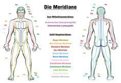 Meridian System Chart - Male body with principal and centerline acupuncture meridians - anterior and posterior view - Traditional Chinese Medicine - Isolated vector illustration on white background. Meridian Acupuncture, Point Acupuncture, Meridian Massage, Qi Gong, Meridian Lines, Body Diagram, Body Chart, Chronic Fatigue Syndrome Diet, Traditional Chinese Medicine