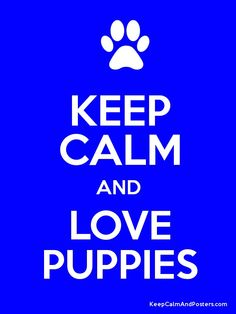 KEEP CALM AND LOVE PUPPIES Poster
