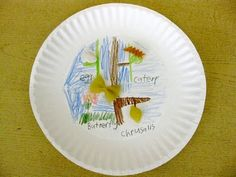paper plate butterfly life cycles