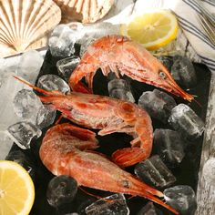 Explore our exquisite range of fresh and frozen seafood ingredients, perfect for a fantastic meal to celebrate the Lunar New Year. Healthy Dinner Recipes, Great Recipes, Favorite Recipes, Seafood Online, Frozen Seafood, Smoked Fish, Eat Seasonal, Base Foods, Seafood