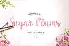 sugar plums modern brush lettering