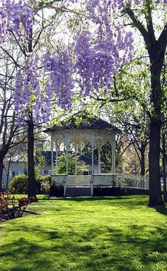 Garden design with a pergola or gazebo is more functional, beautiful and comfortable. Creative and attractive pergolas and gazebos have many advantages. Wisteria Trellis, Wisteria Garden, Wisteria Wedding, Wisteria Tree, Wisteria Pergola, Gazebo Pergola, Diy Trellis, Garden Gazebo, Purple Wisteria