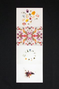 Card designs created together by Risa Kusumoto (Lokokon) and Virginia Polo (Pikolab) Paper Goods, Dried Flowers, Collaboration, Postcards, Stationery, Etsy Shop, Card Designs, Behance, Handmade Gifts