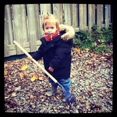"""Kids in the Garden: """"Autumn Jobs Children Can Do"""" (from Apartment Therapy)."""