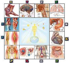 Astrología Médica. Planetas en casa VI y salud. ~ El Mundo de Segundo