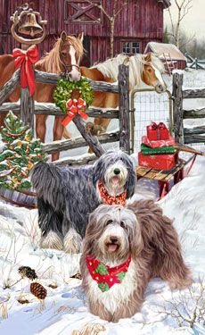 """New for 2011! Bearded Collie ChristmasCards are 8 1/2"""" x 5 1/2"""" and come in packages of 12 cards. One design per package. All designs include envelopes, your personal message, and choice of greeting. Select the inside greeting of your choice from the menu below.Add your personal message to the Comments box during checkout."""