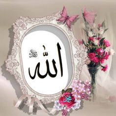 Duaa Islam, Islam Quran, Lion Pictures, Islamic Images, Sai Baba, Alhamdulillah, Allah, Beautiful Flowers, Aircraft