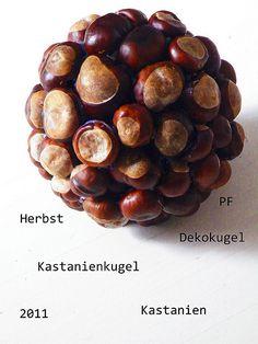Kastanie, Kastanien, Kugel aus Kastanien, Dekokugel, Herbst, Herbstdeko, Kunst mit Kastanien | Flickr - Photo Sharing!