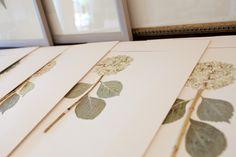 Lauren Lachance Botanical Pressings