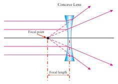 Convex & Concave Lenses - Pass My Exams: Easy exam revision notes for GSCE Physics