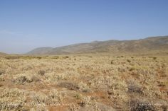 #film production #photo production #fixer  #service production #photo shooting #location #location scout #art department #location fixer #art buying #boutique #almería #fashion #photographie # photography  #advertising #light #sun #locations #landscape  #desert #tabernas desert #spain