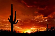 Top Places to See in Arizona