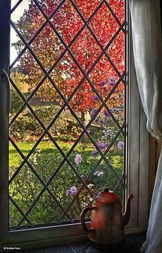 """Stour Valley Autumn, Shillingstone."" A sunny autumn morning, Hollybrook, Shillingstone, November, 2013."