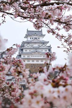 Himeji Castle with cherry blossom - Explore the World with Travel Nerd Nici, o. Himeji Castle with Nara Japan, Japan Sakura, Japan Art, Beautiful World, Beautiful Places, Amazing Places, Beautiful Flowers, White Flowers, Japan Travel