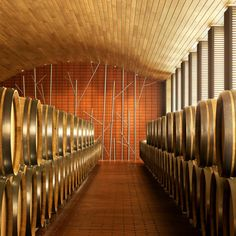 When Salas Studio embarked on the renovation of a wine cellar for Vega-Sicilia vineyard in Valbuena de Duero, Spain, the firm knew the materials ha. Caves, Vegas, Wine Photography, Spanish Wine, Wine Bottle Labels, Interior Design Magazine, In Vino Veritas, French Oak, Wine And Beer