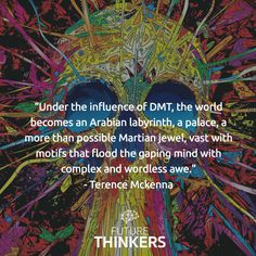 Under the influence of #DMT - Terence Mckenna #quote #psychonaut