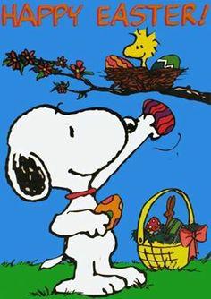 Happy Easter ! :)edohi