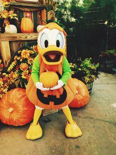 This Donald makes me so happy!
