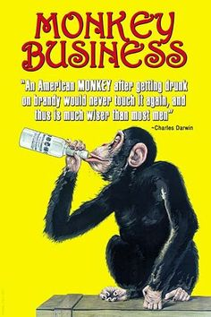 An American Monkey after getting drunk on brandy would never touch it again, and thus is much wiser than most men. Charles Darwin.