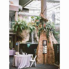 Pittsburgh Zoo and Aquarium Weddings... I love them.  #wedding #bride #pittsburgh #pittsburghwedding #pittsburghweddingphotographer #destinationphotographer #pghwedding #weddingday #burghbride #krystalhealyphotography #film #contax645 #portra400 #FIND