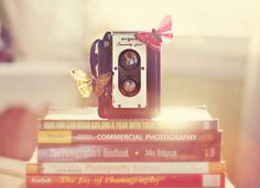 Happy Flare Friday {from Butterfly Photography} (via Kimberly Chorney)