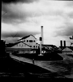 Frome Sugar Factory, Westmoreland, Jamaica    PRODUCT Sugar    Frome Sugar Factory, Westmoreland, Jamaica    Image from the National Library of Jamaica Photograph Collection. Permission to reproduce this image must be obtained from the National Library of Jamaica