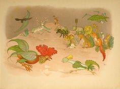 Illustration as it used to be... - 'Der Gartentraum - Neue Blumenmärchen / The garden...