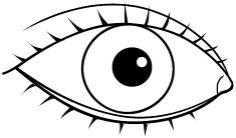 eyes 5 Senses Craft, Five Senses Preschool, Senses Activities, Infant Activities, What Is Parenting, Kids And Parenting, Preschool Printables, Preschool Activities, 1st Year Teachers