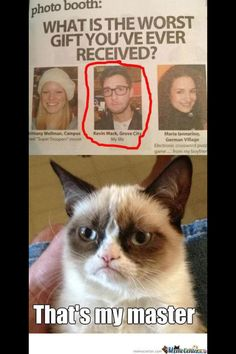 Geek Discover 31 New Ideas For Funny Love Memes Hilarious Grumpy Cat Funny Grumpy Cat Memes Grumpy Cat Quotes Funny Relatable Memes Funny Cats Funny Jokes Grumpy Cats Cat Jokes Grumpy Cat Book Grumpy Cat Christmas Grumpy Cat Quotes, Funny Grumpy Cat Memes, Funny Animal Jokes, Crazy Funny Memes, Really Funny Memes, Funny Relatable Memes, Funny Cats, Funny Jokes, Funny Animals