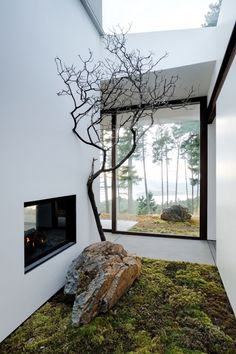 moss carpet, controlled lines and geometric architecture meets nature and natural forms, natural vs. man made, simple, evokes a sense of peace and possibly intimacy since it seems to be in a wooded area