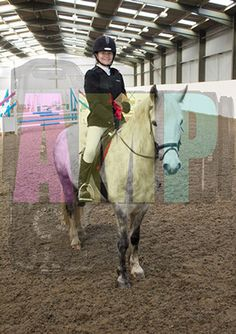 Topthorn New Years Unaffiliated Showjumping 4th January 2015