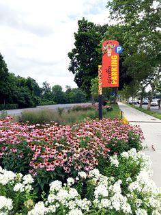 Philadelphia Zoo, Girard Ave, Summer 2015