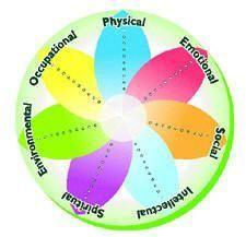 wellness dimensions diagram