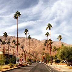 Adventure Palm Springs  #travel #california #palmsprings