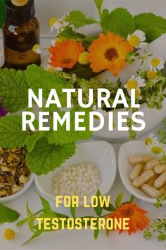 This book is intended to help men who are experiencing low androgen levels and the attendant physical and emotional problems that go along with them. It is also intended to introduce to a wider audience the idea of phytoestrogens, that is, plants that contain male hormones. #testosterone #lowtestosterone #naturalRemedies #naturalCure Low Testosterone, Natural Cures, Books To Read, Health, Ethnic Recipes, Plants, Men, Health Care, Plant